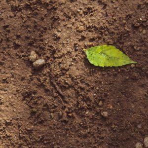 millcreek-utah-topsoil-delivery